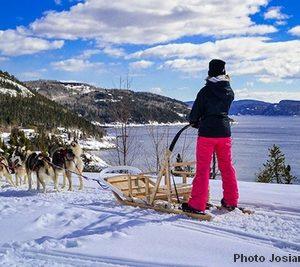Traineau à chiens Saguenay02